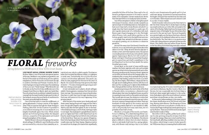 Floral Fireworks ATJourneysMayJune2014 (1)_Page_1